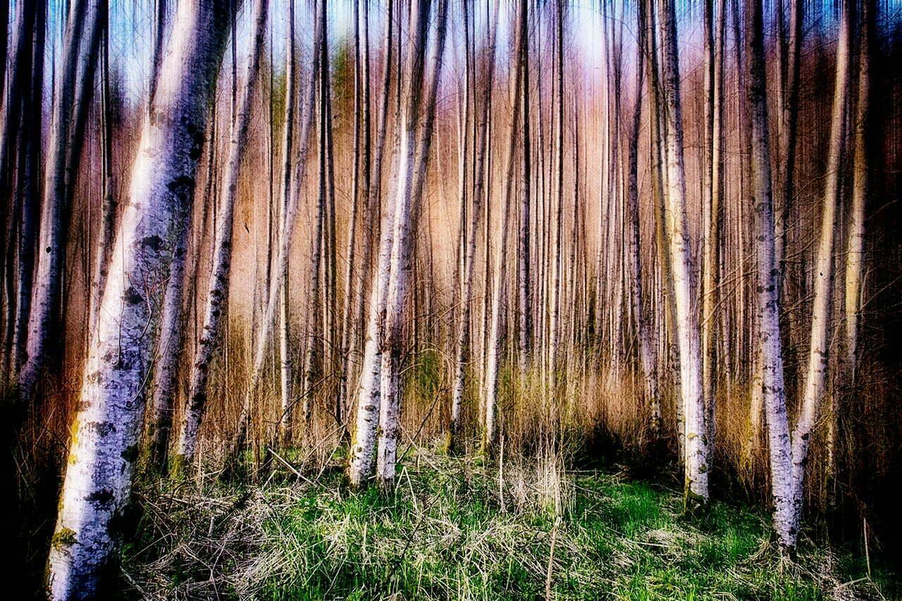 Impressions NO 1 | Fine Art Landscape | © Jonathan McIntyre Photography