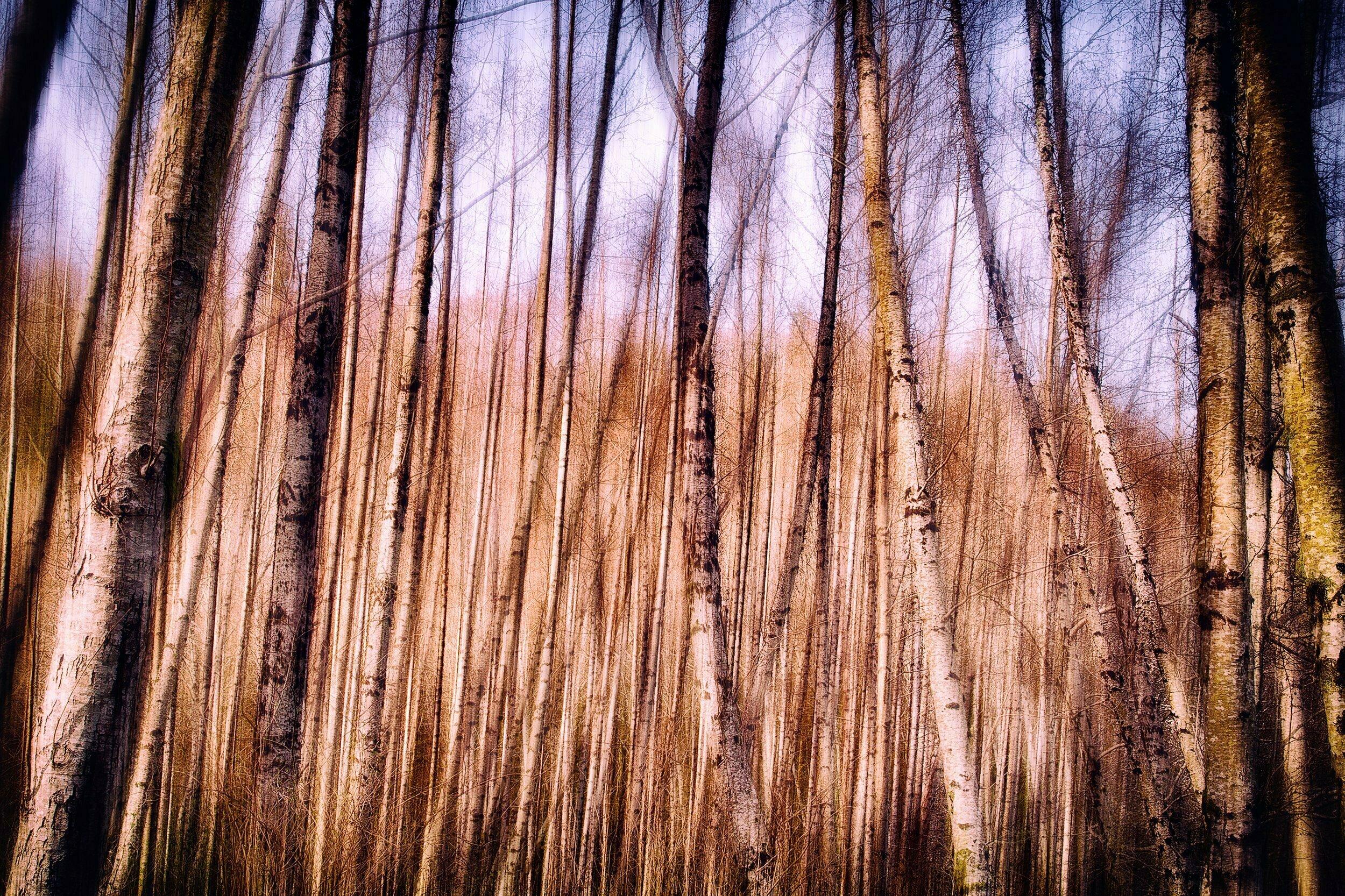 Impressions NO 2 | Fine Art Landscape | © Jonathan McIntyre Photography