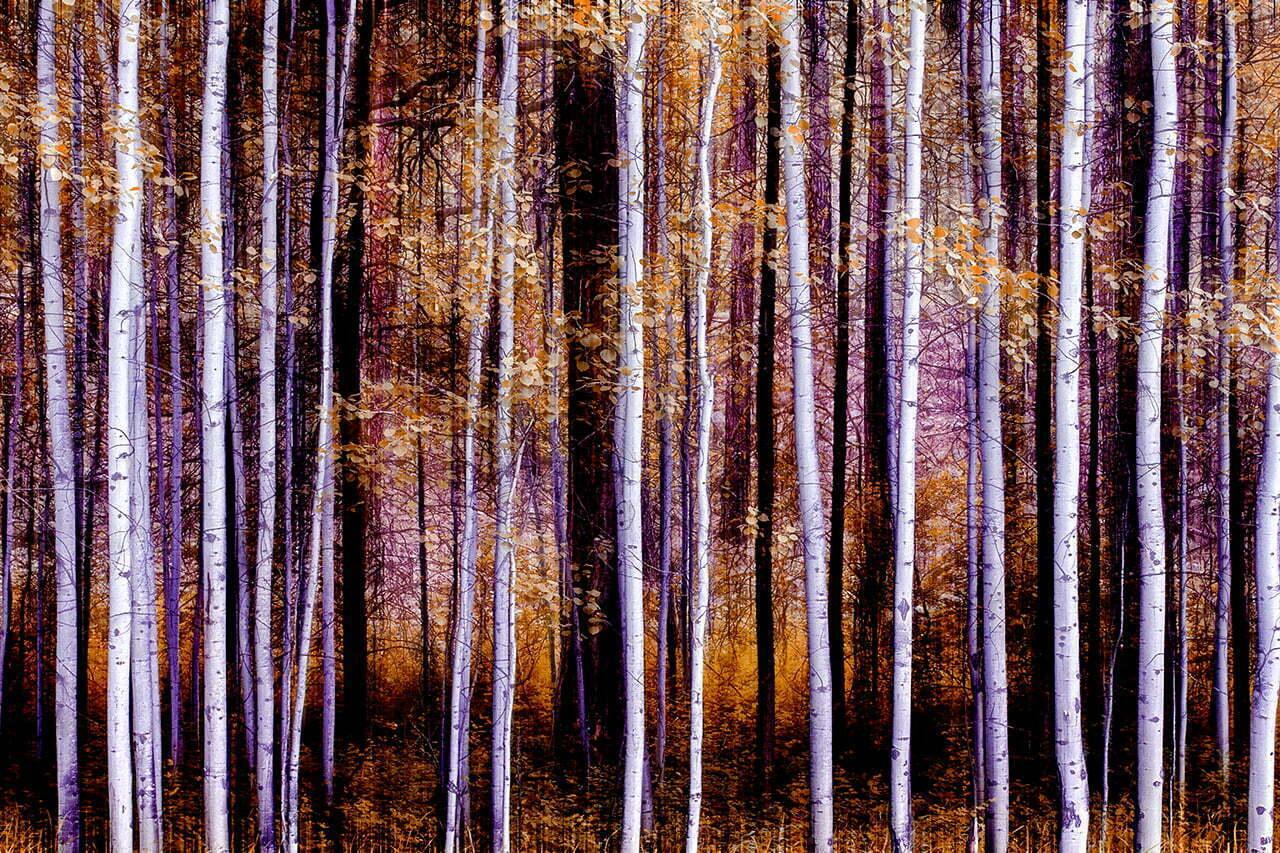 Impressions NO 4 | Fine Art Landscape | © Jonathan McIntyre Photography