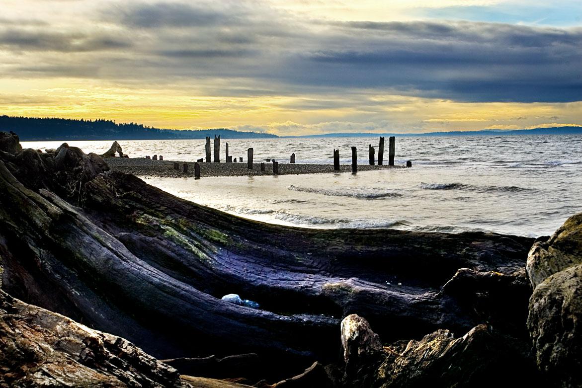 Beach Wood Pylons | © Jonathan McIntyre Photography