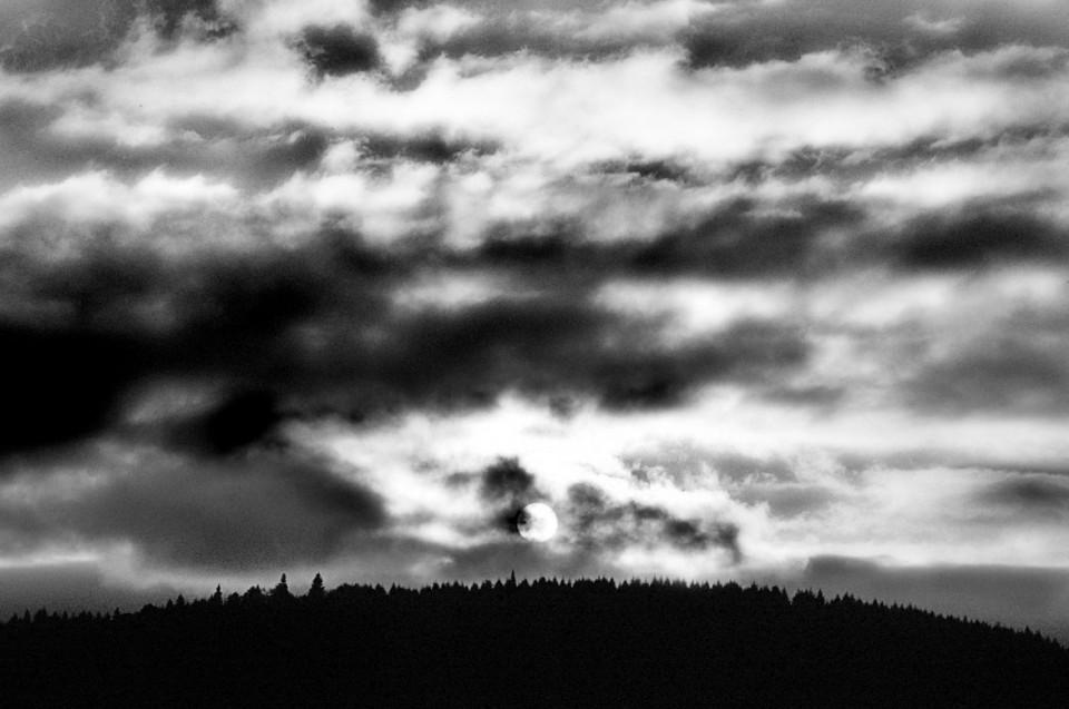 Evening Sun | © Jonathan McIntyre Photography