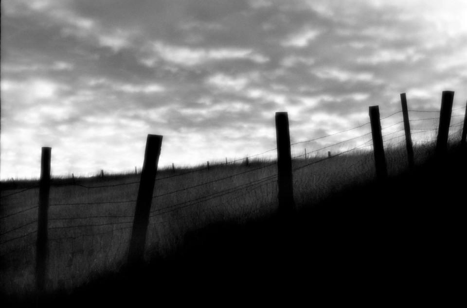 Fenceline | © Jonathan McIntyre Photography
