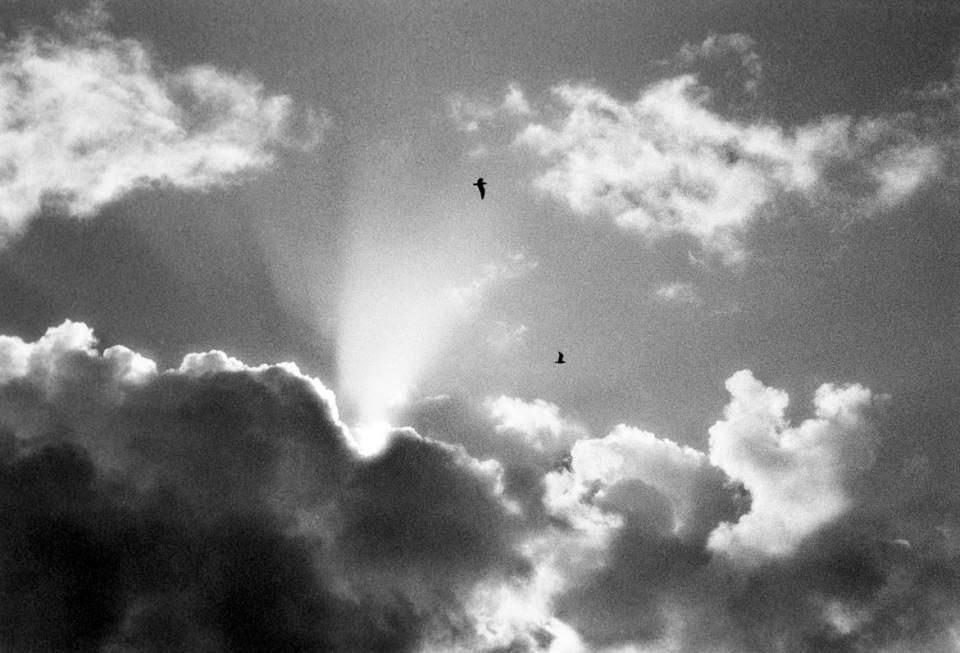 Light of Heaven | © Jonathan McIntyre Photography