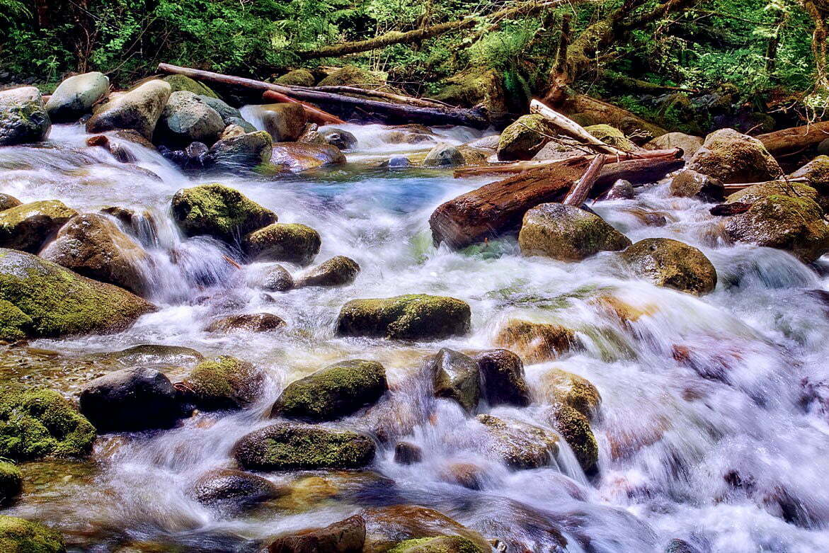 Rivers Edge | © Jonathan McIntyre Photography