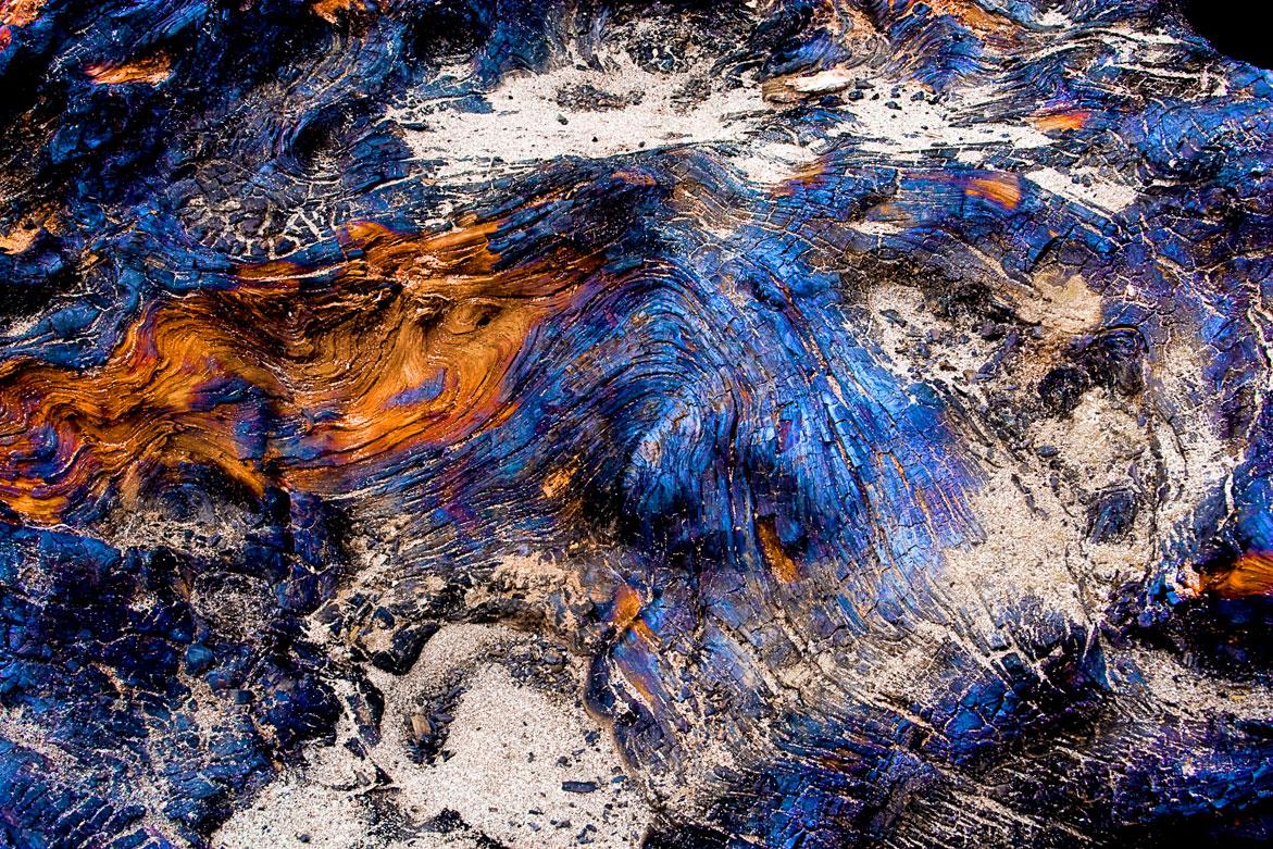 Wicked Wood 2 | © Jonathan McIntyre Photography